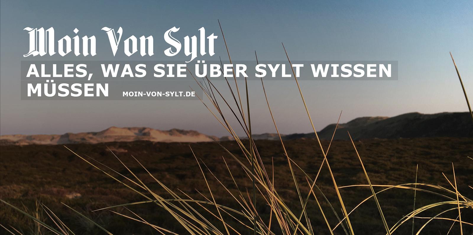 Moin von Sylt, alles, was Sie über sylt wissen müssen